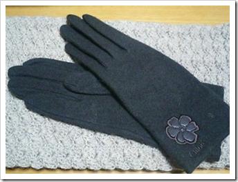 glove2008